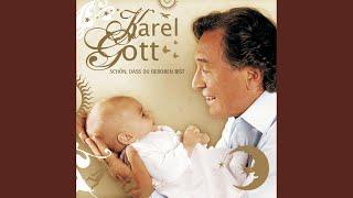 Musik-Video-Miniaturansicht zu Dir gehört mein Herz (You'll Be in My Heart) Songtext von Karel Gott