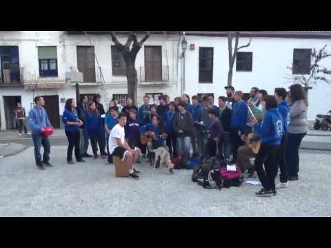 El vídeo las lecciones de los bailes para la quema de la grasa