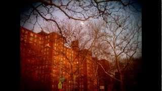 Chubb Rock ft Shazi Rock & Niqui Rock - Da Houses