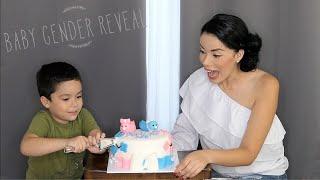 Gender Reveal Cake Cutting
