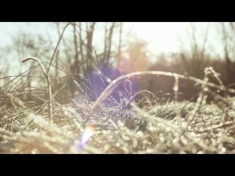 Spreewald: Ein Schweizer schwärmt