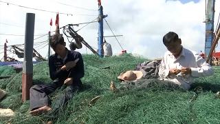 Tin Tức 24h: Lào Cai tiêu hủy 60 bánh heroin và hơn 100 kg ngà voi
