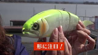 【Kumiのちょこっとバスフィッシング】ジャイアントベイト1