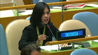 Diplomasi hoax alaIndonesia