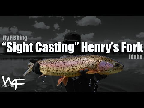 """W4F - Fly Fishing Idaho """"Sight Casting March Browns"""" Henry's Fork"""
