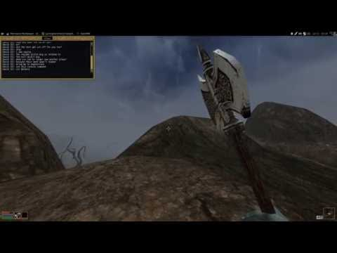 Multiplayer test sessions :: Morrowind Multiplayer