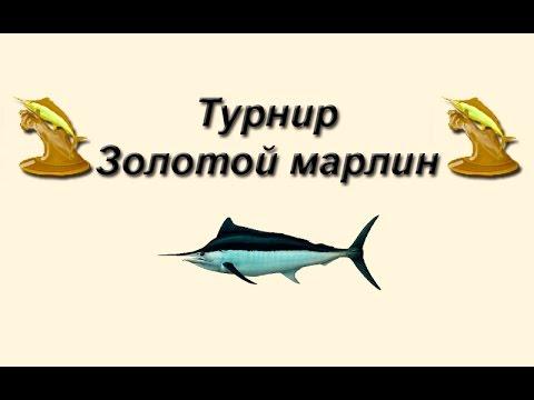 Русская Рыбалка 3.99 Турнир Золотой Марлин #1