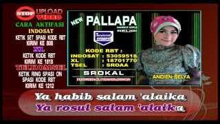 New Pallapa - Srokal - Andien Selya [ Official ]