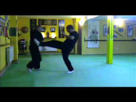 Técnicas marciales con pasos y piernas