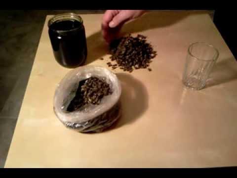 Рецепт пчелиного подмора или эликсир молодости и лекарство от рака