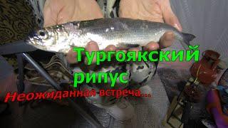 Рыбалка озере тургояк