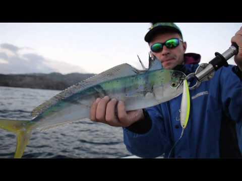 Video di una pesca di rzhak