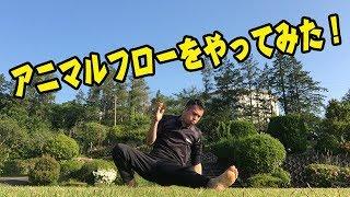 アニマルフローワークアウト!体幹・自重トレーニング!