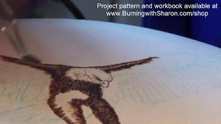 Pyrography How To Woodburn An Eagle Part 1 – Torso Black Feathers And White Feathers
