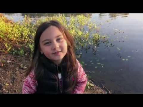 Cabela's Commercial (2016 - 2017) (Television Commercial)