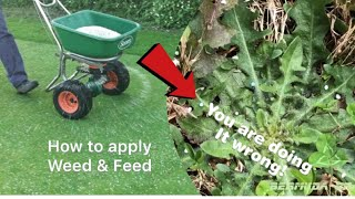 YOU ARE DOING IT WRONG!! How to apply Weed and Feed