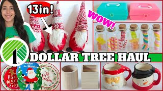 DOLLAR TREE HAUL NOVEMBER 2020 GIANT GNOMES AND CABOODLE CASES