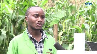 I earn a living by decorating graves of dead people and I am happy about it | Charles Karanja