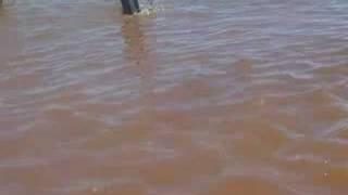 preview picture of video 'Aguas Abiertas Colon 2007'