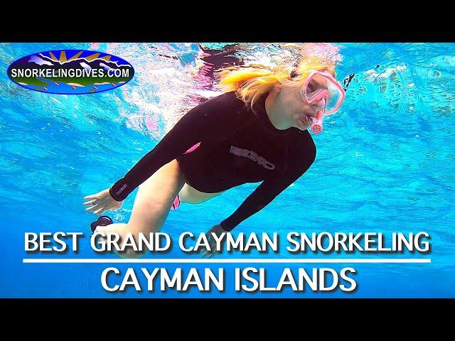 Best Grand Cayman Snorkeling