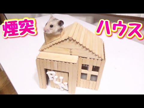 """""""アイス棒だけで作る""""  ハムスターの覗ける煙突付きハウス!!(DIY)"""