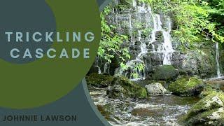 Nature Meditation for Relaxation and Insomnia by Johnnie Lawson-Birds Singing & Sounds of Nature