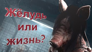 Жёлудь или жизнь?/Dead by Daylight/Монтаж