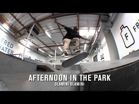 Afternoon in the Park: Dlamini Dlamini   TransWorld SKATEboarding