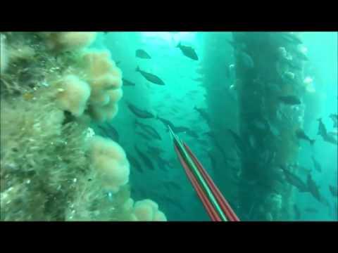 La pesca su una picca in settembre su una filatura