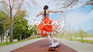 BUSAN Longboarding with Hyojoo in Spring