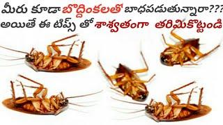 బొద్దింకలన్నింటిని శాశ్వతంగా తరిమికొట్టే సింపుల్ చిట్కాలు/ How To Get rid of Cockroaches From Home