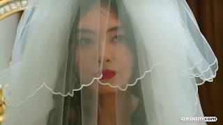 اغاني حصرية هوى الروح زواج نريمان و ماجد من الحلقة الاخيرة???? تحميل MP3