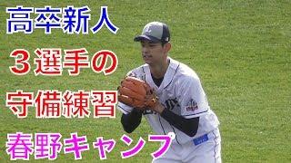 高卒新人3選手西川愛也含むの守備練習!西武ライオンズ春野キャンプ2018