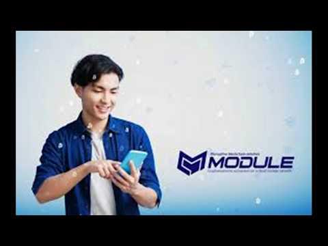 Проект Module. Предварительные итоги ICO