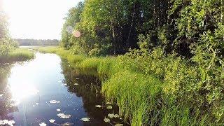 Популярные озера для рыбалки в карелии