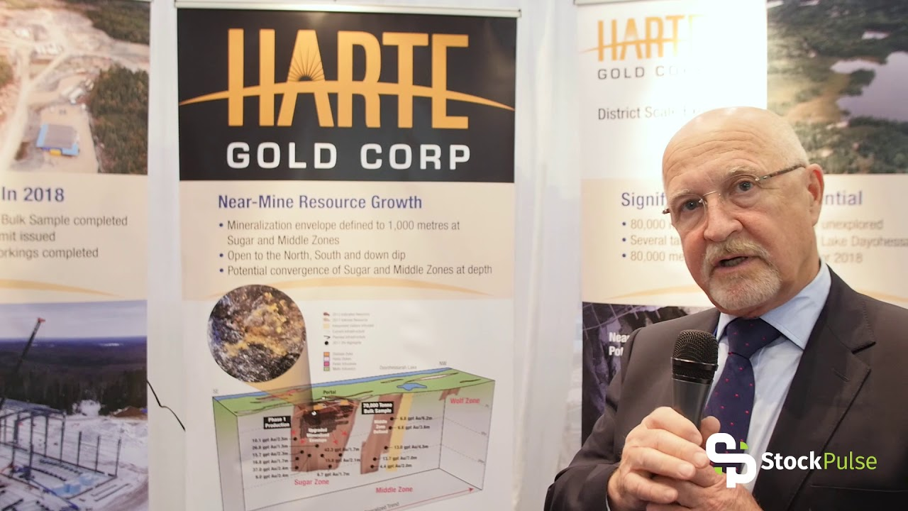 Harte Gold Corp Catalyst Clip with President & CEO Stephen Roman at the 2018 PDAC in Toronto