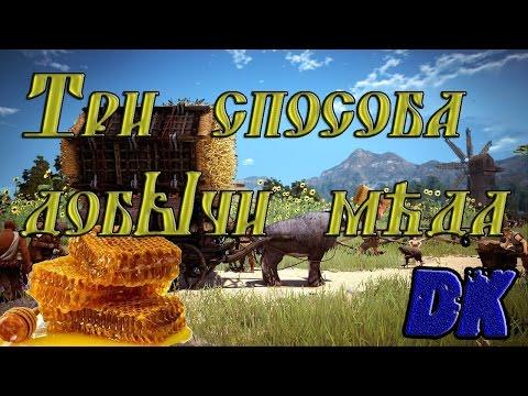 Black Desert (Россия) - Три способа добычи мёда