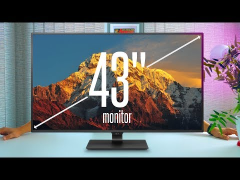 How big is TOO BIG? My Review of LG's MASSIVE 43″ IPS 4K Monitor [43UD79]