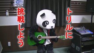 【フェイフェイのパンダでもわかるギター講座】トリル