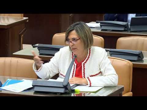 Mila Marcos en el Grupo de Trabajo Unión Europea de la Comisión para la Reconstrucción Social
