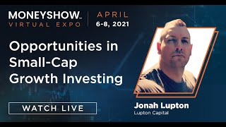 Opportunities in Small-Cap Growth Investing
