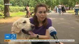 Забег в столице: Анастасия Даугуле вышла на пробежку с собакой