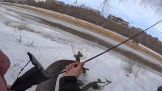 Выбор спиннинга для ловли жереха с берега