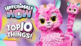 The Top 10 🎉BEST 🎉Things to do with Your Hatchimals Wow!
