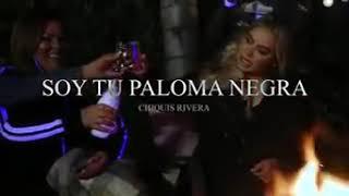Yeni Rivera Canciones Paloma Negra 免费在线视频最佳电影电视节目