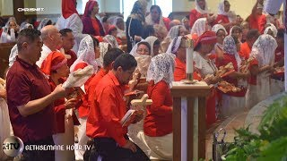 VOTIVE MASS OF CONSECRATION/ RECEPTION OF THE ROSE OF PURITY.