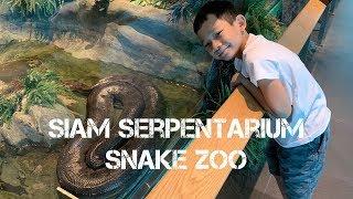 Siam Serpentarium Snake Zoo - Lat Krabang - Bangkok