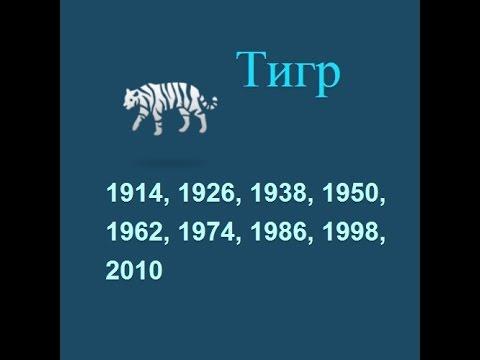 Год тигра, гороскоп составленный психологом Натальей Кучеренко.