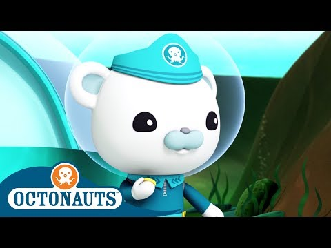 octonauts operation deep freeze