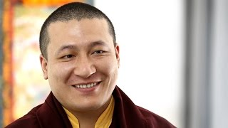 Karmapa about Meditation